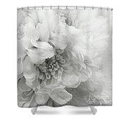Soft Dahlia White Shower Curtain