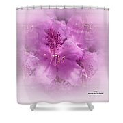 Soft Edged Floral Shower Curtain