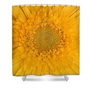 Soft Explosion Shower Curtain