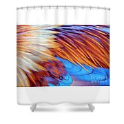 Soft Feather Palette Shower Curtain