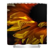 Soft Flame Shower Curtain