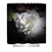 Soft Focus Gardenia Shower Curtain