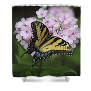 Soft Focus Tiger Swallowtail Shower Curtain