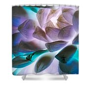 Soft Glow Succulents Shower Curtain