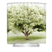 Soft Green Tree Shower Curtain