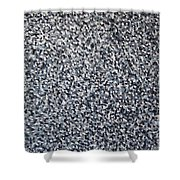 Soft Grey Scale  Shower Curtain