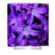 Soft Hyacinth Shower Curtain