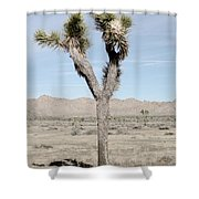 Soft Joshua Tree Shower Curtain