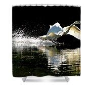Soft Landing  Shower Curtain