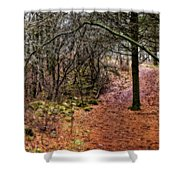 Soft Light In The Woods Shower Curtain