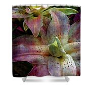 Soft Lilies 3637 Idp_2 Shower Curtain