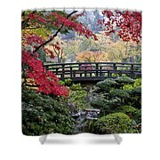 Soft Morning Light Shower Curtain
