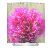 Soft Peony Shower Curtain