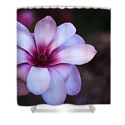 Soft Pink Magnolia Shower Curtain