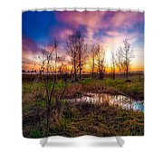 Soft Pinks Shower Curtain
