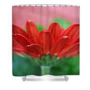 Soft Red Shower Curtain