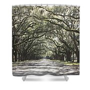 Soft Southern Day Shower Curtain