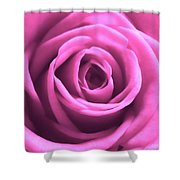 Soft Touch Pink Rose Shower Curtain
