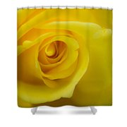 Soft Yellow Rose Shower Curtain