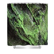 Soften The Moment Shower Curtain
