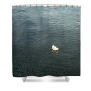 Softly Floating Plume Shower Curtain
