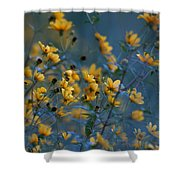 Softly Yellow And Blue Shower Curtain