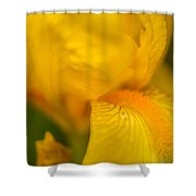 Softly Yellow Shower Curtain