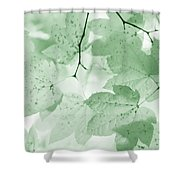 Softness Of Green Leaves Shower Curtain