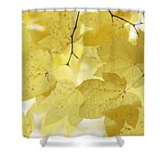 Softness Of Yellow Leaves Shower Curtain