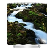 Sol Duc Falls 2 Shower Curtain