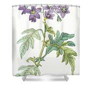 Solanum Quercifolium Shower Curtain