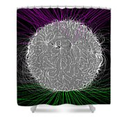 Solar Magnetic Field Shower Curtain