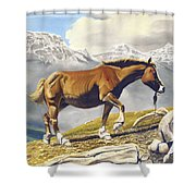 Sole Survivor Shower Curtain