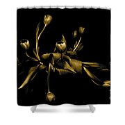 Solid Gold Shower Curtain