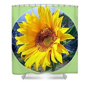 Solid Sunshine Shower Curtain