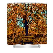 Solitary Fall Shower Curtain