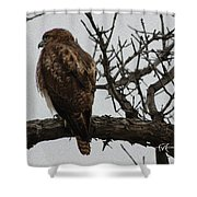Solitary Sentinel Shower Curtain