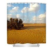 Solitary Shrub Shower Curtain by Barbara Von Pagel