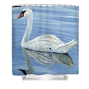 Solitary Swan Shower Curtain