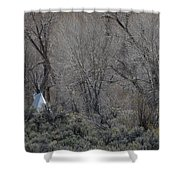Solitary Tipi Shower Curtain