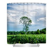 Solitree Shower Curtain