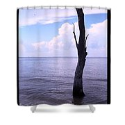 Solitude At Sea Shower Curtain