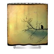 Solitude Mood Shower Curtain