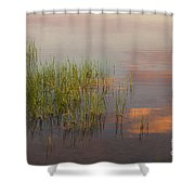 Solitute At The Lake Shower Curtain