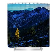 Solo Larch 2 Shower Curtain