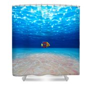 Solo Under The Sea Shower Curtain