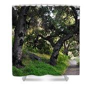 Solstice Canyon Live Oak Trail Shower Curtain