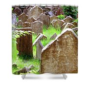 Somber Granite Shower Curtain