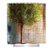 Something About Saint Laurent Shower Curtain