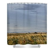 Something About Wind And Sun. Shower Curtain